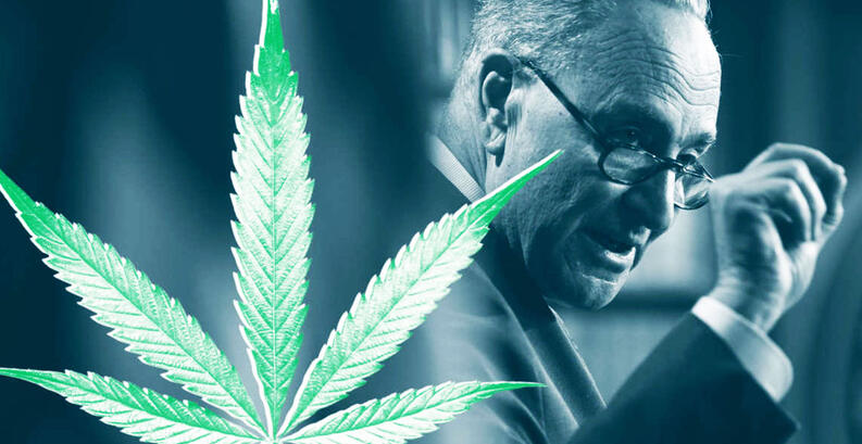 Senator Chuck Schumer to Speak at NYC Cannabis Parade & Rally on May 1